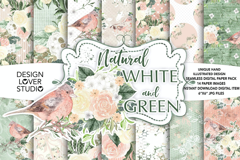 白与绿的和谐曲