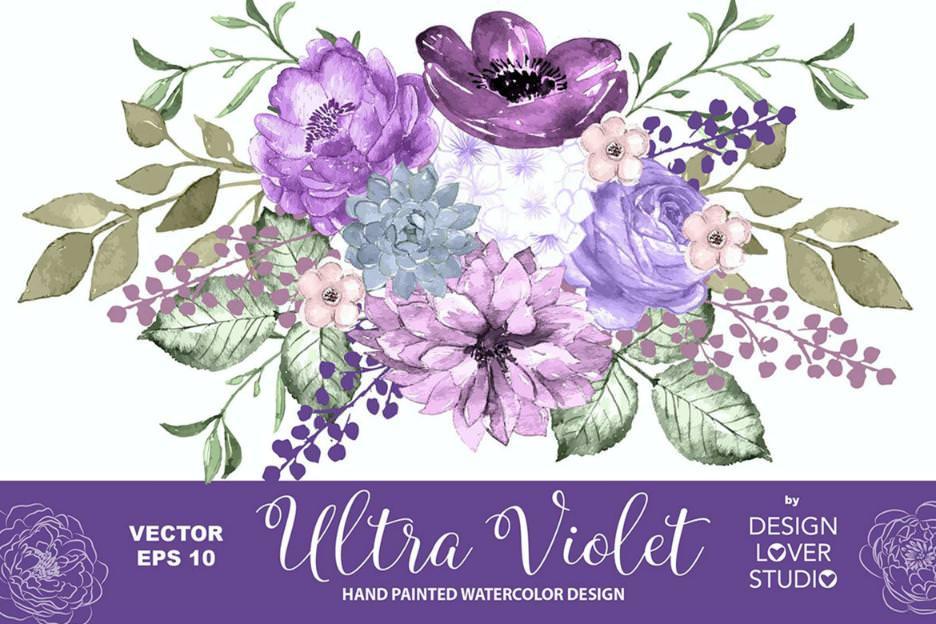 紫罗兰的爱