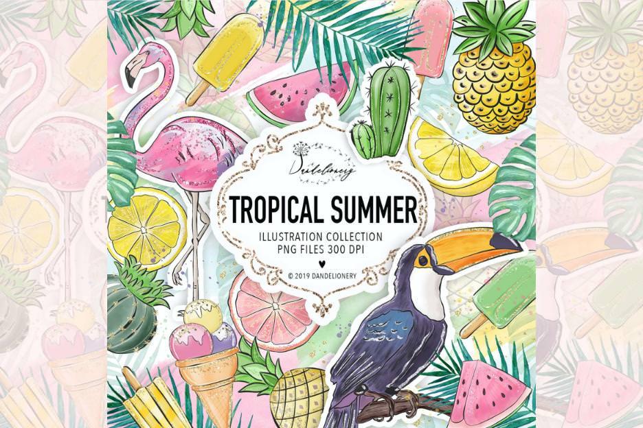 热带的夏天