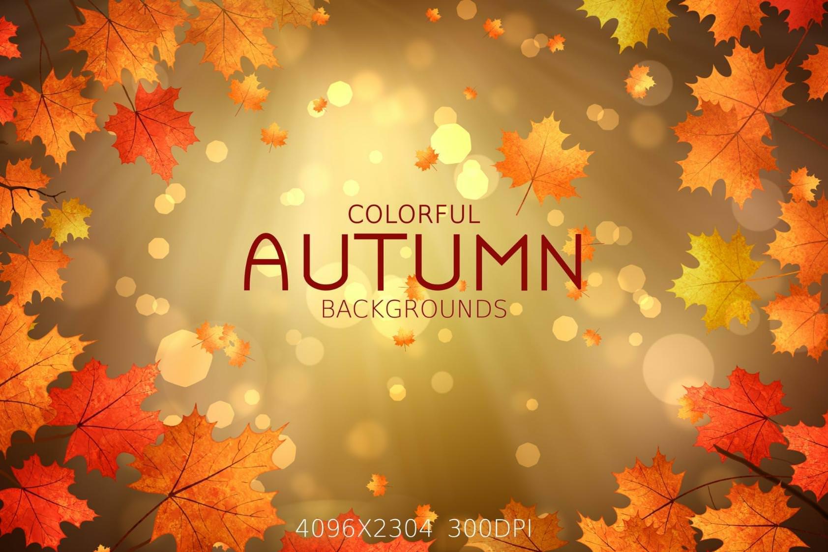 4种秋季光景效果纹理背景